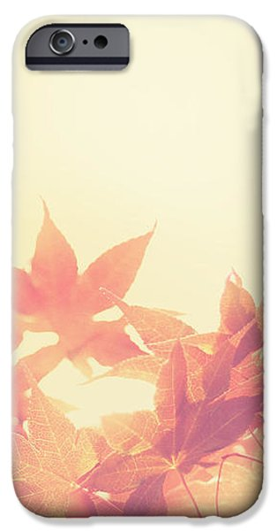 Autumn Sky iPhone Case by Amy Tyler