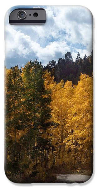 Autumn Splendor iPhone Case by Carol Cavalaris