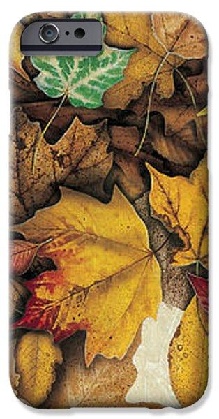 Autumn Splendor iPhone Case by JQ Licensing