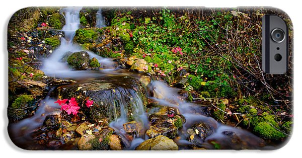 Fall Season iPhone Cases - Autumn Stream iPhone Case by Chad Dutson