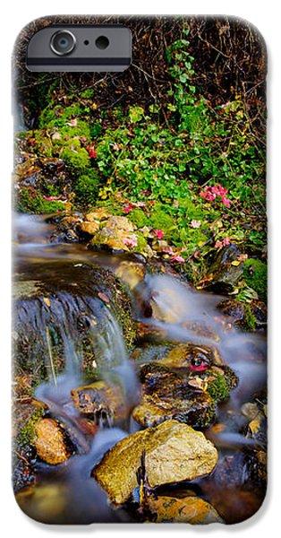 Autumn Stream iPhone Case by Chad Dutson