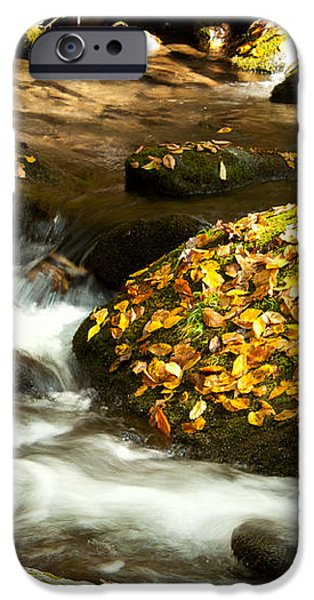 Autumn Stream iPhone Case by Lena Auxier
