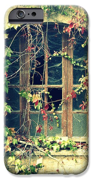 Tendrils iPhone Cases - Autumn vines across a window iPhone Case by Nomad Art And  Design