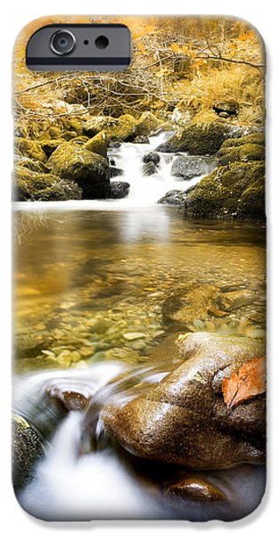 Autumnal Stream iPhone Case by Mal Bray