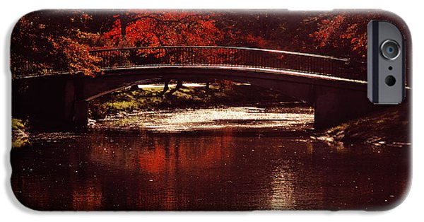 Charles River iPhone Cases - Autumnal Sunshine iPhone Case by Dana DiPasquale