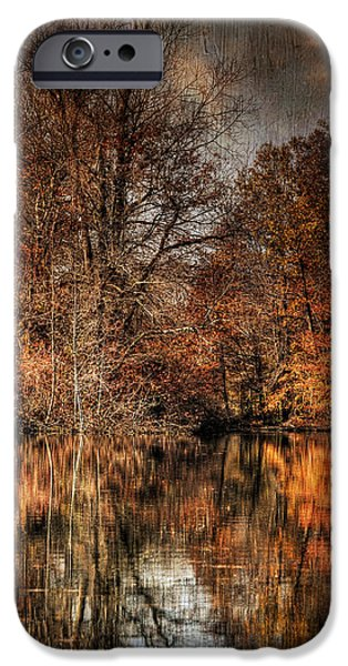 Autumn Leaf On Water iPhone Cases - Autumns End iPhone Case by Paul Ward