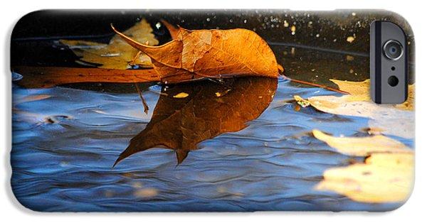 Autumn's Reflection iPhone Case by Jai Johnson