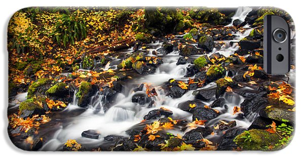 Creek iPhone Cases - Autumns Staircase iPhone Case by Mike  Dawson