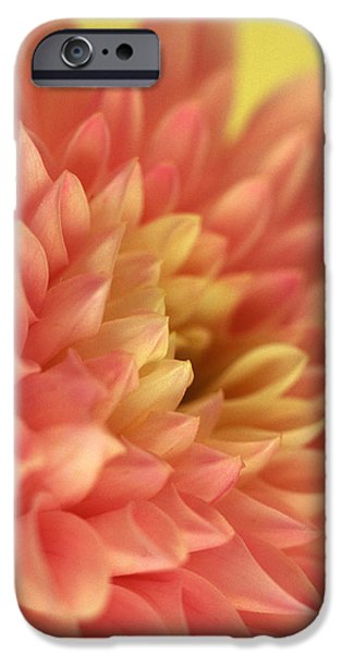 Awakened iPhone Case by Kathy Yates