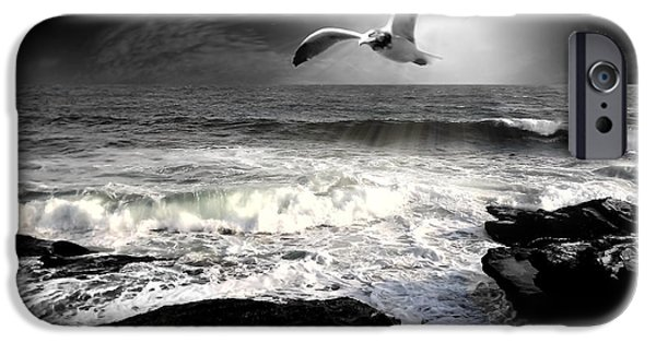 Seagull iPhone Cases - Away iPhone Case by Lourry Legarde