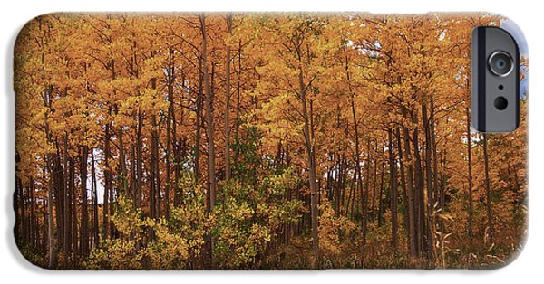 Autumn Landscape Mixed Media iPhone Cases - Awesome Aspens iPhone Case by Carol Cavalaris