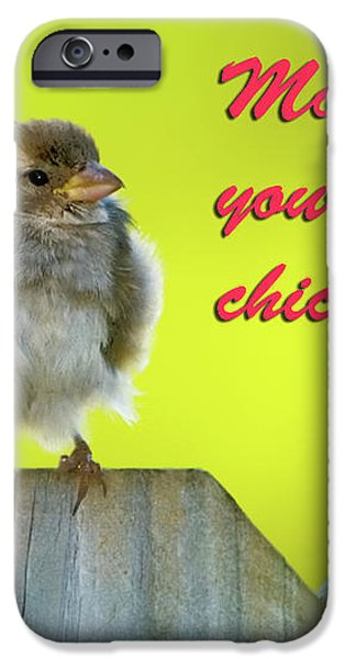 Baby bird iPhone Case by Betty LaRue