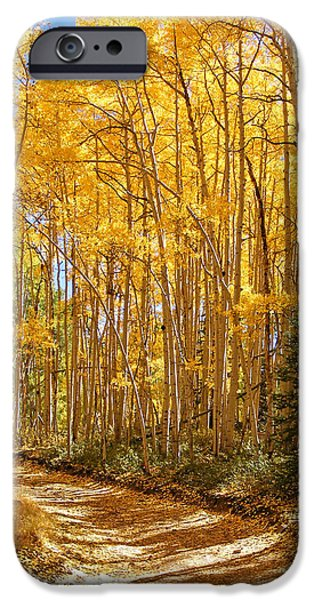 Back Roads Of Autumn iPhone Case by Kara Kincade