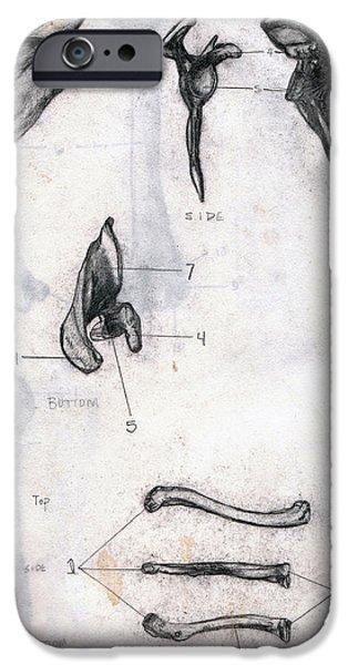 Nature Study iPhone Cases - Back Side Front Bottom iPhone Case by Duwayne Washington