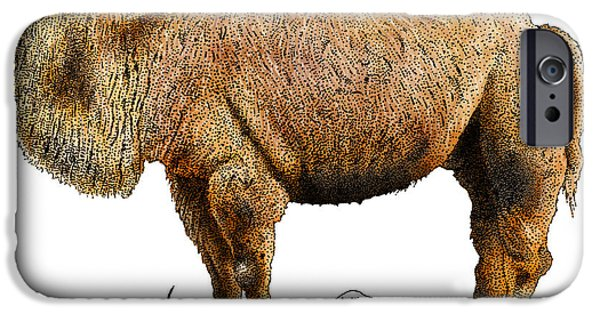 Fauna Drawings iPhone Cases - Bactrian Camel iPhone Case by Roger Hall and Photo Researchers