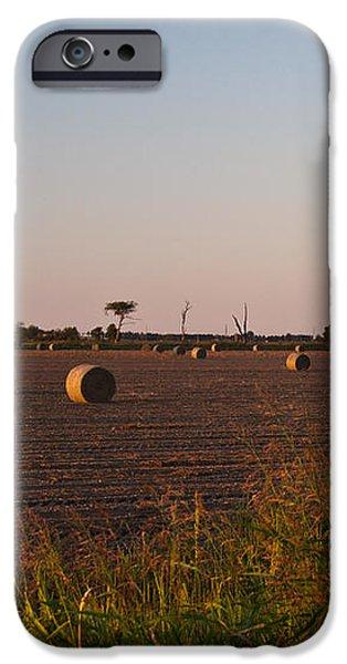 Bales in Peanut Field 10 iPhone Case by Douglas Barnett