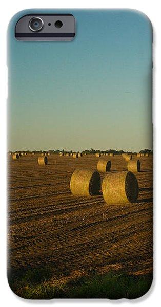 Bales in Peanut Field 13 iPhone Case by Douglas Barnett