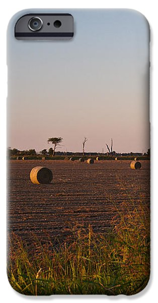 Bales in Peanut Field 6 iPhone Case by Douglas Barnett