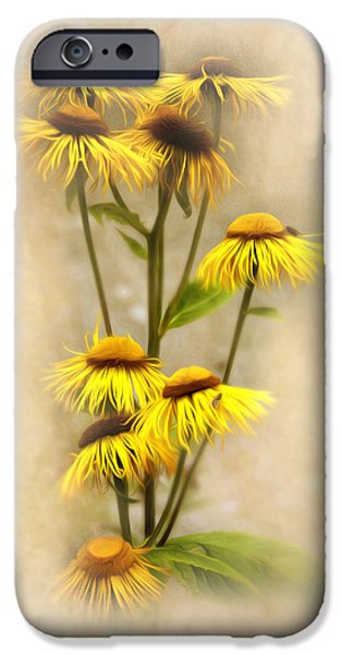 Close Up Floral Mixed Media iPhone Cases - Ballerina skirts  iPhone Case by Svetlana Sewell