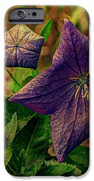 Balloon Flower - Antiqued iPhone Case by Michael Garyet
