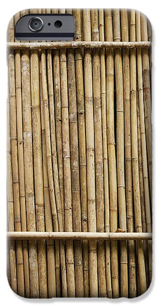 Bamboo Fence iPhone Case by Don Mason