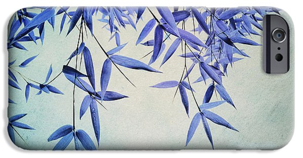 Flora Photographs iPhone Cases - Bamboo Susurration iPhone Case by Priska Wettstein