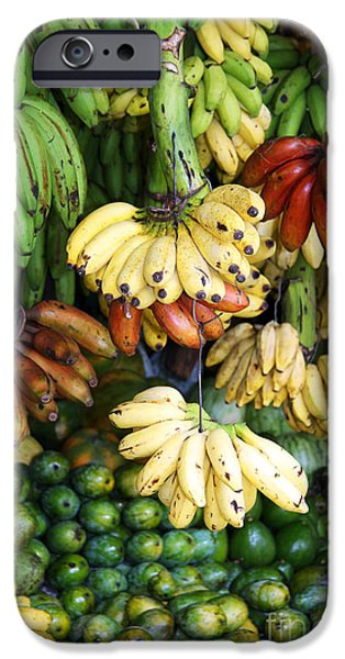 Banana display. iPhone Case by Jane Rix