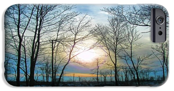 The View Mixed Media iPhone Cases - Bare Of Winter iPhone Case by Debra     Vatalaro
