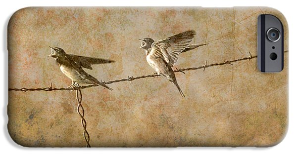 Barn Swallow iPhone Cases - Barn Swallows on barbed wire fence iPhone Case by Randall Nyhof