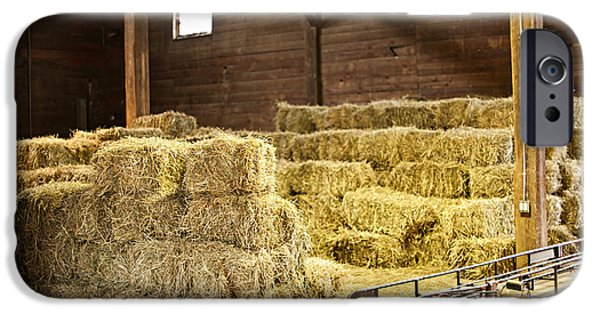 Hay Bales iPhone Cases - Barn with hay bales iPhone Case by Elena Elisseeva