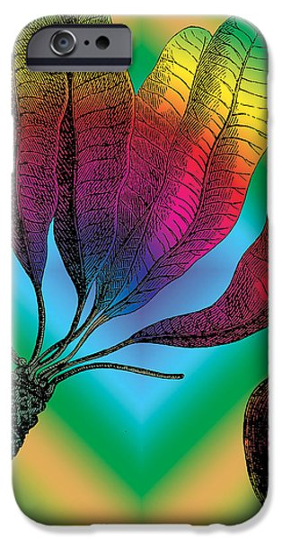 Outmoded iPhone Cases - Basia Plant iPhone Case by Eric Edelman