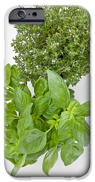 Aromatic iPhone Cases - Basil and thyme iPhone Case by Joana Kruse