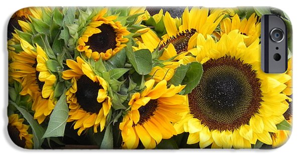 Recently Sold -  - Flower Of Life iPhone Cases - Basket Of Sunflowers iPhone Case by Chrisann Ellis