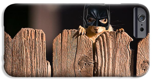 Bushy Tail iPhone Cases - Bat Squirrel  the Cape Crusader known for putting away nuts.  iPhone Case by James BO  Insogna