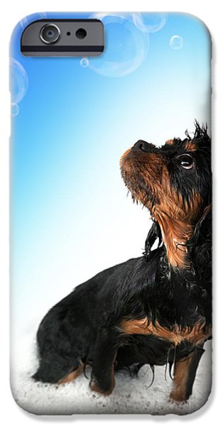 Adorable iPhone Cases - Bathtime fun iPhone Case by Jane Rix