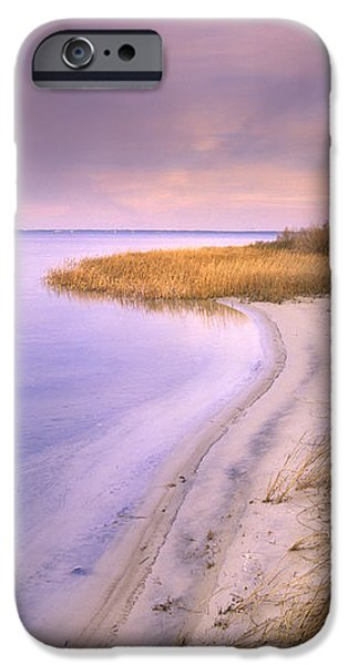 Beach Along Saint Josephs Bay Florida iPhone Case by Tim Fitzharris