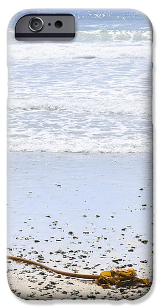 Beach detail on Pacific ocean coast iPhone Case by Elena Elisseeva