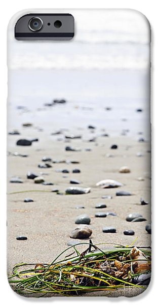 Seaweed iPhone Cases - Beach detail on Pacific ocean coast of Canada iPhone Case by Elena Elisseeva