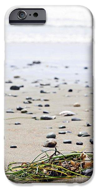 Beach detail on Pacific ocean coast of Canada iPhone Case by Elena Elisseeva