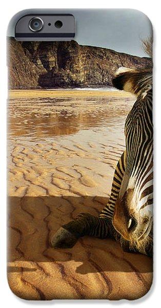 Beach Zebra iPhone Case by Carlos Caetano