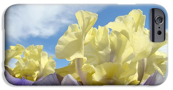 Yellow Bearded Iris iPhone Cases - Bearded Iris Flowers art prints Floral Irises iPhone Case by Baslee Troutman Floral Fine Art Prints