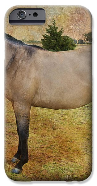 Beautiful Buckskin iPhone Case by Betty LaRue