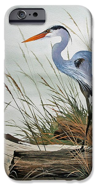 Beautiful Heron Shore iPhone Case by James Williamson