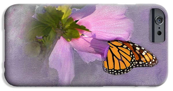 Eating Entomology iPhone Cases - Beautiful in Pink iPhone Case by Betty LaRue