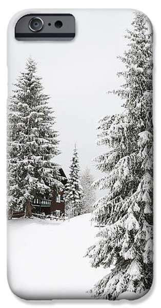 Beautiful winter landscape with trees and house iPhone Case by Matthias Hauser