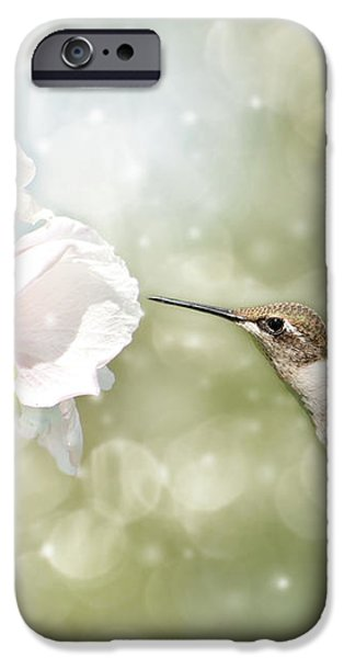 Beauty in flight iPhone Case by Sari ONeal