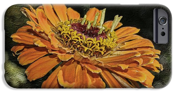 Macro Mixed Media iPhone Cases - Beauty In Orange Petals iPhone Case by Deborah Benoit