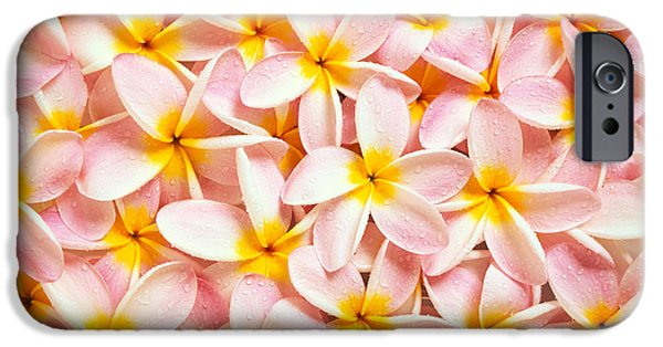 Bed Spread iPhone Cases - Bed Of Light iPhone Case by Kyle Rothenborg - Printscapes