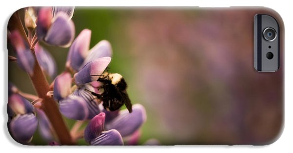 Close Focus Floral iPhone Cases - Bee and Lupine iPhone Case by Venetta Archer