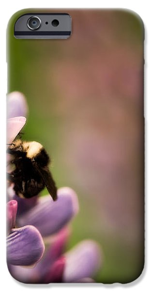 Bee and Lupine iPhone Case by Venetta Archer